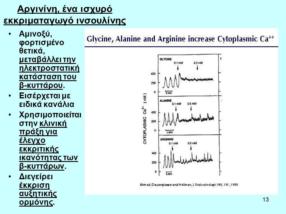 13 Αργινίνη, ένα ισχυρό εκκριματαγωγό ινσουλίνης Αμινοξύ, φορτισμένο θετικά, μεταβάλλει την ηλεκτροστατική κατάσταση του β-κυττάρου.