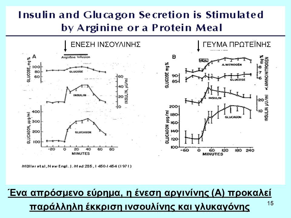 15 Ένα απρόσμενο εύρημα, η ένεση αργινίνης (Α) προκαλεί παράλληλη έκκριση ινσουλίνης και γλυκαγόνης ΕΝΕΣΗ ΙΝΣΟΥΛΙΝΗΣΓΕΥΜΑ ΠΡΩΤΕΪΝΗΣ