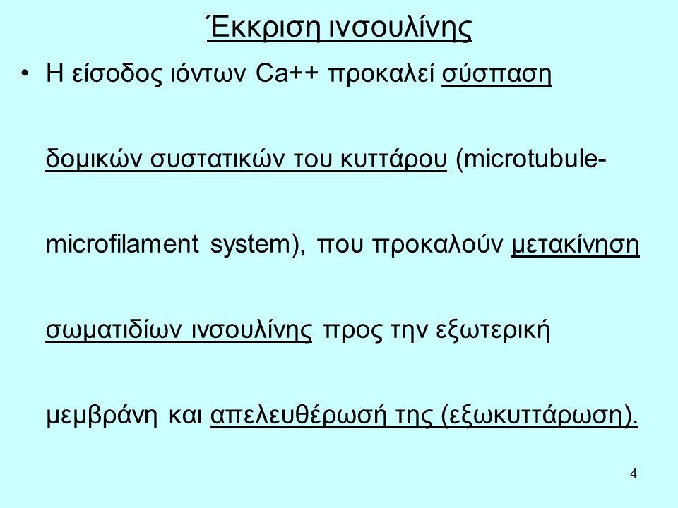 55 Ορισμός και ταξινόμηση του σακχαρώδη διαβήτη τύπου 1 Ορισμός: Ο Διαβήτης τύπου 1 (ή ινσουλινο- εξαρτώμενος διαβήτης ή νεανικός σύμφωνα με τους παλαιότερους ορισμούς) έχει σαν κύριο χαρακτηριστικό την ολική καταστροφή των β- κυττάρων του παγκρέατος μετά από αυτοάνοσο ή άγνωστο μηχανισμό.
