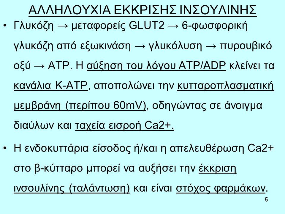 5 ΑΛΛΗΛΟΥΧΙΑ ΕΚΚΡΙΣΗΣ ΙΝΣΟΥΛΙΝΗΣ Γλυκόζη → μεταφορείς GLUT2 → 6-φωσφορική γλυκόζη από εξωκινάση → γλυκόλυση → πυρουβικό οξύ → ΑΤΡ.