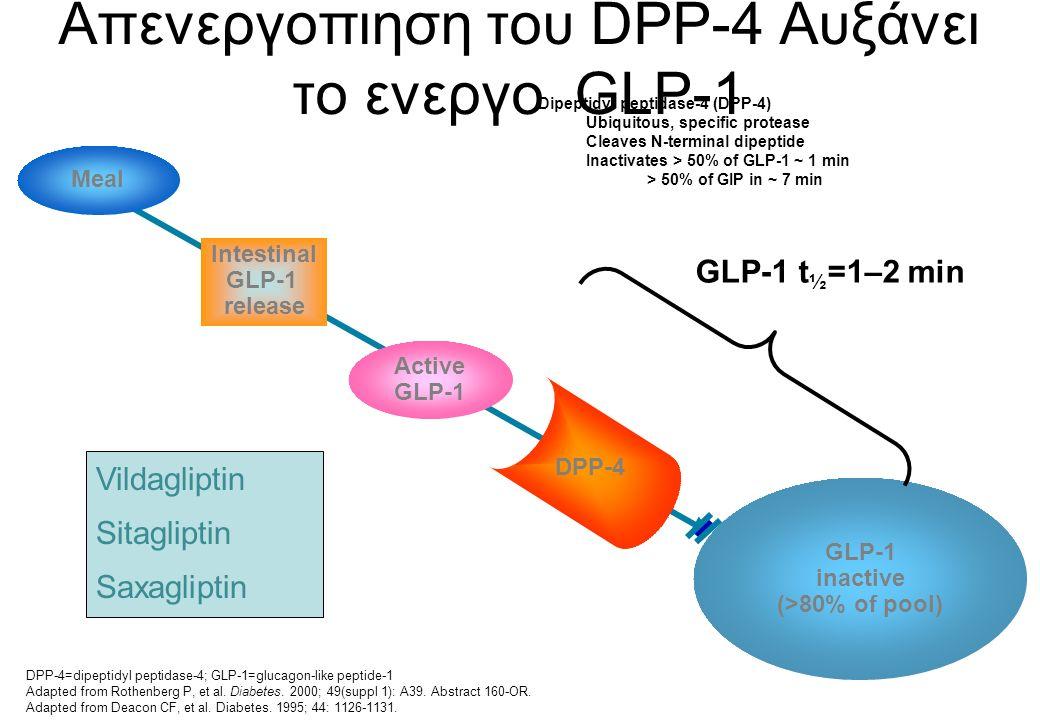 Απενεργοπιηση του DPP-4 Αυξάνει το ενεργο GLP-1 GLP-1 inactive (>80% of pool) Active GLP-1 Meal DPP-4 Intestinal GLP-1 release GLP-1 t ½ =1–2 min DPP-