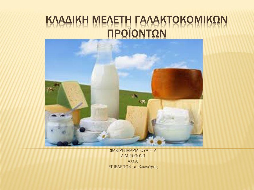  Κατέχει εξέχουσα θέση στον ευρύτερο κλάδο των τροφίμων, καθώς περιλαμβάνει μερικές από τις μεγαλύτερες βιομηχανίες ειδών διατροφής της χώρας  Βασικό σημείο αναφοράς του κλάδου είναι το γεγονός ότι το σύνολο της εγχώριας πρωτογενούς παραγωγής αγελαδινού γάλακτος καθορίζεται από το κοινοτικό σύστημα των ποσοστώσεων (εθνική ποσόστωση 2009: 845 χιλ.