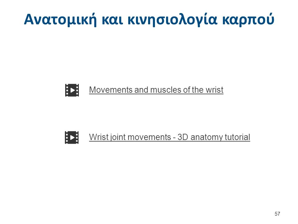 Ανατομική και κινησιολογία καρπού 57 Movements and muscles of the wrist Wrist joint movements - 3D anatomy tutorial