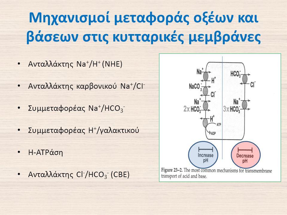 Μηχανισμοί μεταφοράς οξέων και βάσεων στις κυτταρικές μεμβράνες Ανταλλάκτης Na + /H + (NHE) Ανταλλάκτης καρβονικού Na + /CI - Συμμεταφορέας Na + /HCO 3 - Συμμεταφορέας H + /γαλακτικού Η-ΑΤPάση Ανταλλάκτης Cl - /HCO 3 - (CBE)
