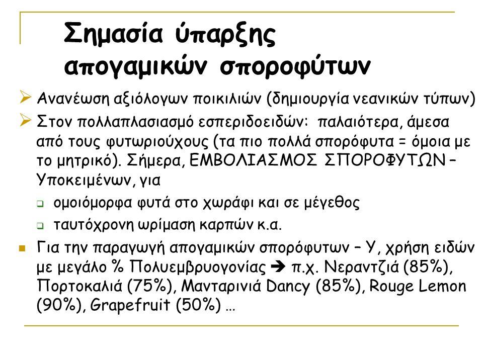  Ανανέωση αξιόλογων ποικιλιών (δημιουργία νεανικών τύπων)  Στον πολλαπλασιασμό εσπεριδοειδών: παλαιότερα, άμεσα από τους φυτωριούχους (τα πιο πολλά σπορόφυτα = όμοια με το μητρικό).