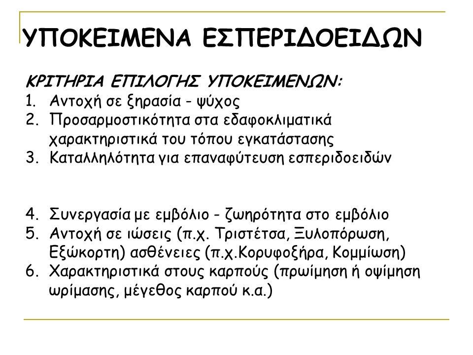 ΥΠΟΚΕΙΜΕΝΑ ΕΣΠΕΡΙΔΟΕΙΔΩΝ ΚΡΙΤΗΡΙΑ ΕΠΙΛΟΓΗΣ ΥΠΟΚΕΙΜΕΝΩΝ: 1.Αντοχή σε ξηρασία - ψύχος 2.Προσαρμοστικότητα στα εδαφοκλιματικά χαρακτηριστικά του τόπου εγκατάστασης 3.Καταλληλότητα για επαναφύτευση εσπεριδοειδών 4.Συνεργασία με εμβόλιο - ζωηρότητα στο εμβόλιο 5.Αντοχή σε ιώσεις (π.χ.