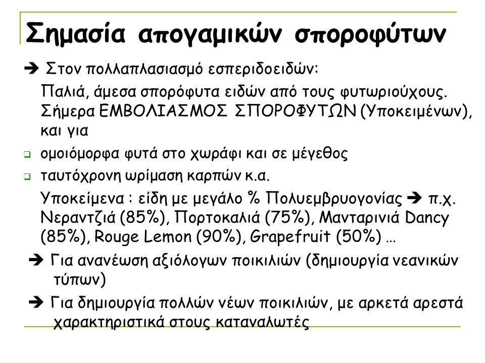 4) CITRANGES (Σιτράνζες) Τρίφυλλη Πορτοκαλιά Χ Πορτοκαλιά Ανθεκτικά σε Χ.