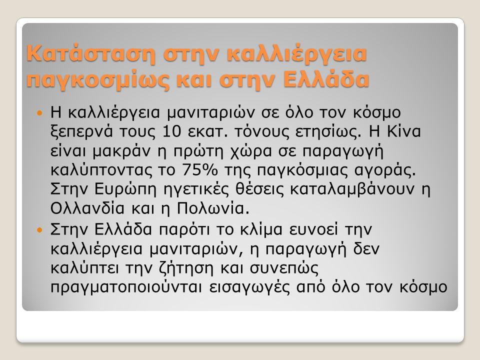 Κατάσταση στην καλλιέργεια παγκοσμίως και στην Ελλάδα Η καλλιέργεια μανιταριών σε όλο τον κόσμο ξεπερνά τους 10 εκατ. τόνους ετησίως. Η Κίνα είναι μακ