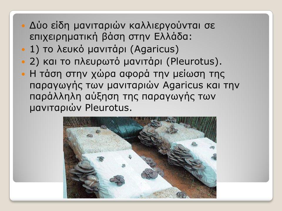 Δύο είδη μανιταριών καλλιεργούνται σε επιχειρηματική βάση στην Ελλάδα: 1) το λευκό μανιτάρι (Agaricus) 2) και το πλευρωτό μανιτάρι (Pleurotus). Η τάση