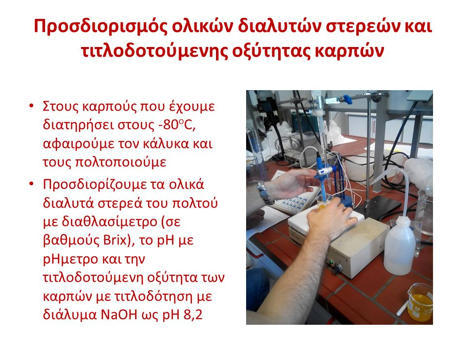Προσδιορισμός ολικών διαλυτών στερεών και τιτλοδοτούμενης οξύτητας καρπών Στους καρπούς που έχουμε διατηρήσει στους -80 ο C, αφαιρούμε τον κάλυκα και τους πολτοποιούμε Προσδιορίζουμε τα ολικά διαλυτά στερεά του πολτού με διαθλασίμετρο (σε βαθμούς Brix), το pH με pHμετρο και την τιτλοδοτούμενη οξύτητα των καρπών με τιτλοδότηση με διάλυμα NaOH ως pH 8,2