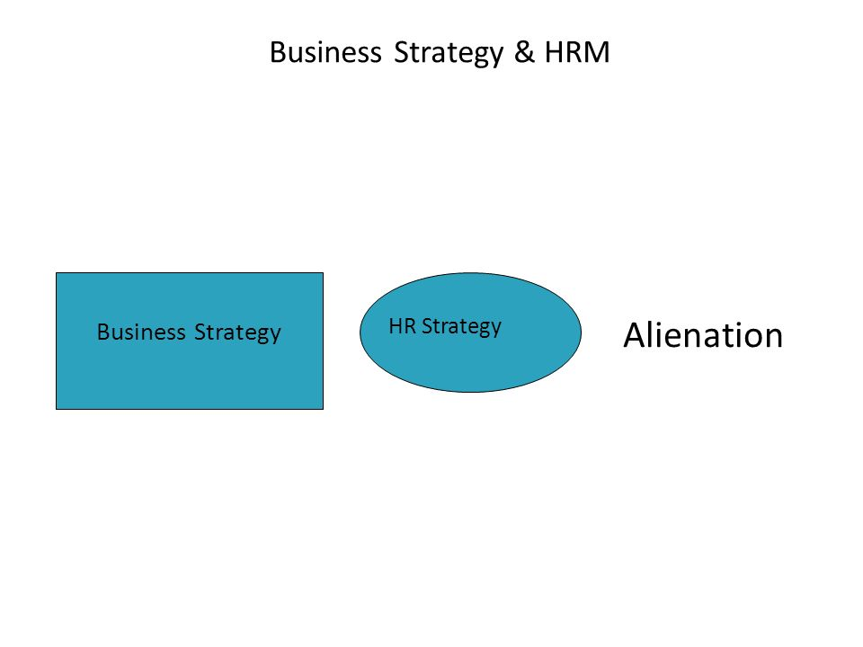 Business Strategy & HRM Alienation Business Strategy HR Strategy