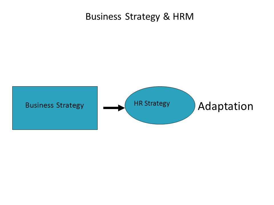 Adaptation Business Strategy HR Strategy Business Strategy & HRM