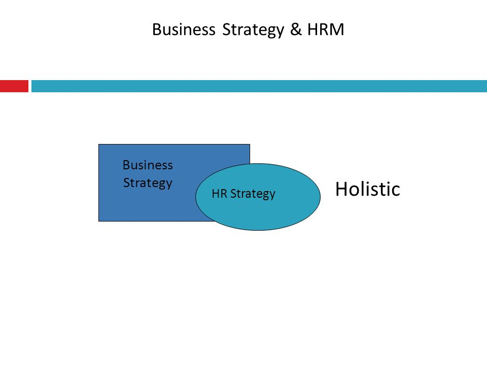 Business Strategy & HRM Holistic Business Strategy HR Strategy