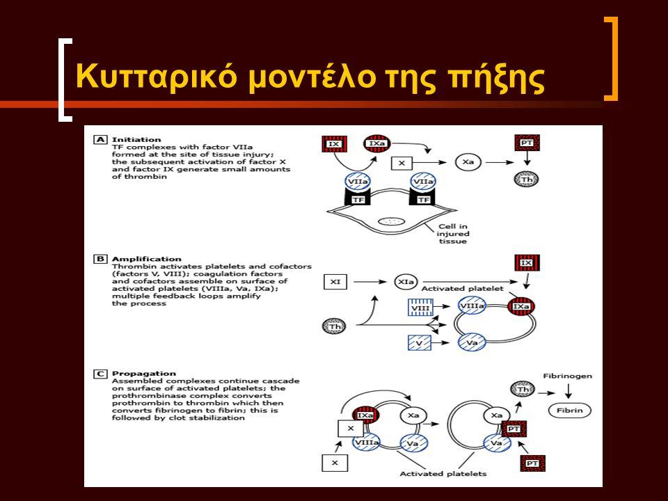 Κυτταρικό μοντέλο της πήξης