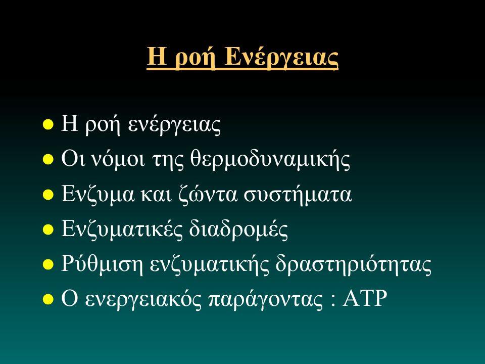 Η ροή Ενέργειας l Η ροή ενέργειας l Οι νόμοι της θερμοδυναμικής l Ενζυμα και ζώντα συστήματα l Ενζυματικές διαδρομές l Ρύθμιση ενζυματικής δραστηριότητας l Ο ενεργειακός παράγοντας : ΑΤΡ