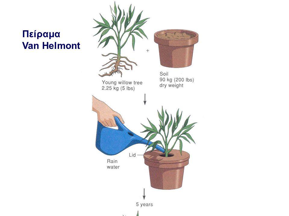 Πείραμα Van Helmont