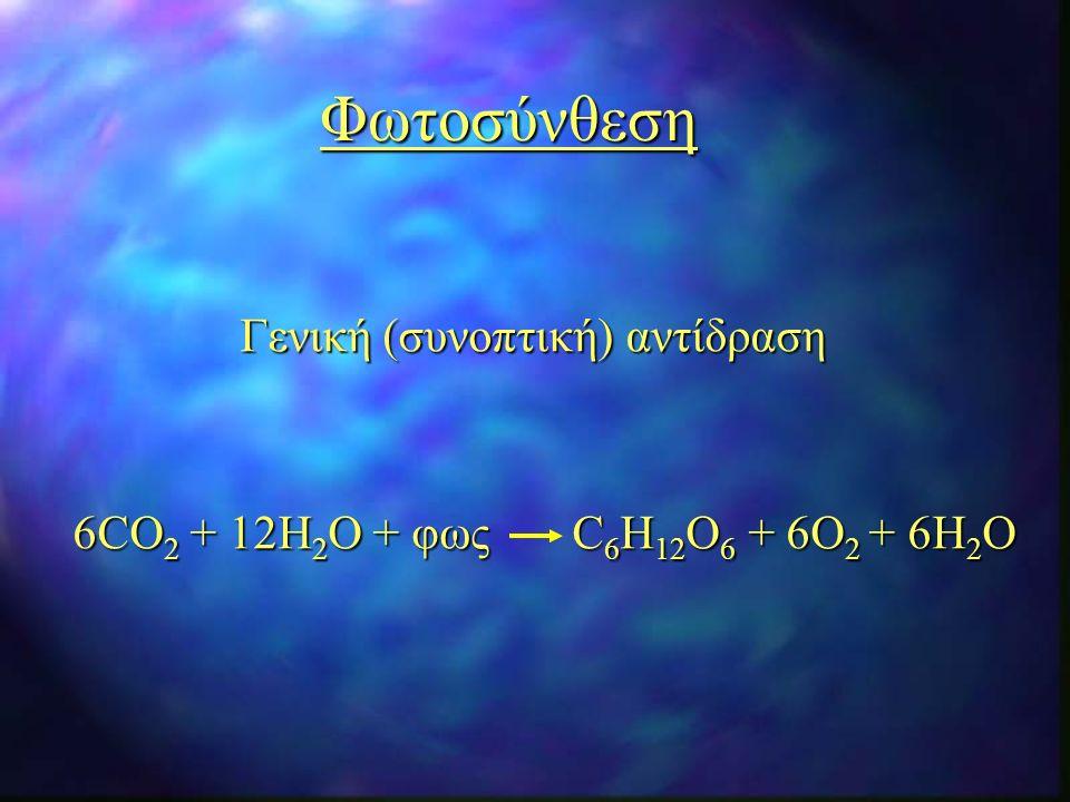 Φωτοσύνθεση Γενική (συνοπτική) αντίδραση 6CO 2 + 12H 2 O + φως C 6 H 12 O 6 + 6O 2 + 6H 2 O