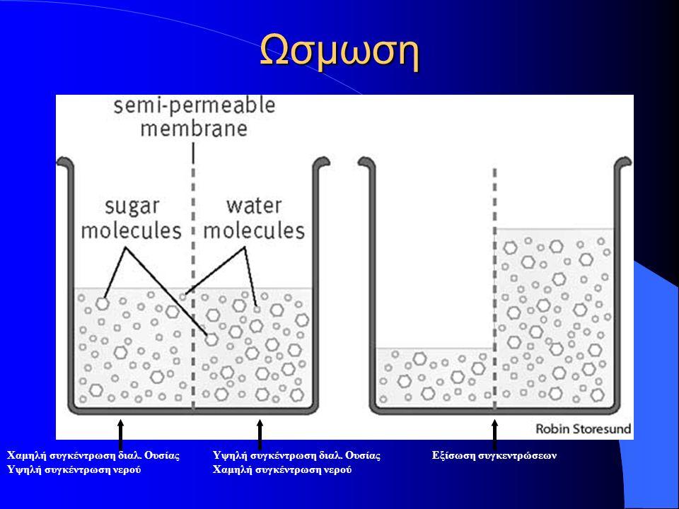 Χαμηλή συγκέντρωση διαλ. Ουσίας Υψηλή συγκέντρωση νερού Υψηλή συγκέντρωση διαλ.