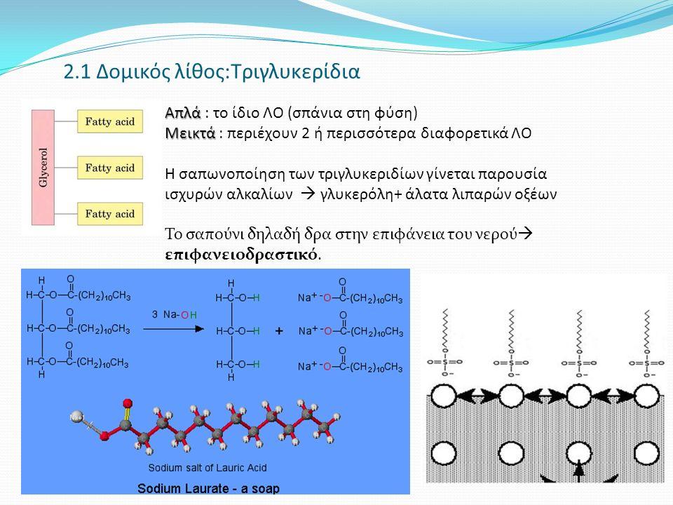 2.1 Δομικός λίθος:Τριγλυκερίδια Απλά Απλά : το ίδιο ΛΟ (σπάνια στη φύση) Μεικτά Μεικτά : περιέχουν 2 ή περισσότερα διαφορετικά ΛΟ Η σαπωνοποίηση των τριγλυκεριδίων γίνεται παρουσία ισχυρών αλκαλίων  γλυκερόλη+ άλατα λιπαρών οξέων Το σαπούνι δηλαδή δρα στην επιφάνεια του νερού  επιφανειοδραστικό.