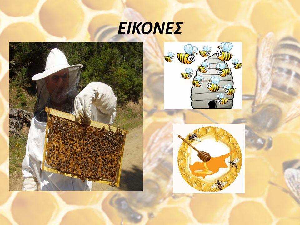 Μουσείο Μελισσοκομίας και Φυσικής Ιστορίας της Μέλισσας Το Μουσείο Μέλισσας είναι το μοναδικό στην Ελλάδα και βρίσκεται στη Ρόδο. Ιδρύθηκε από τους Ν.