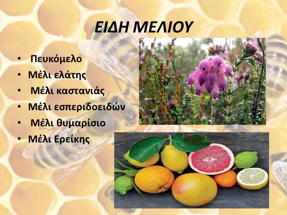 ΜΕΛΙ ΩΣ ΚΑΛΛΙΝΤΙΚΟ Η χρήση του μελιού ως καλλυντικό ήταν γνωστή από πολύ παλιά στους αρχαίους λαούς της Μεσογείου. Το μέλι έχει δραστικές μαλακτικές,