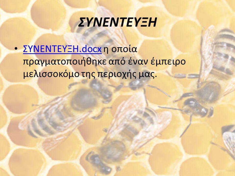 Μουσείο Μελισσοκομίας και Φυσικής Ιστορίας της Μέλισσας Το Μουσείο Μέλισσας είναι το μοναδικό στην Ελλάδα και βρίσκεται στη Ρόδο.