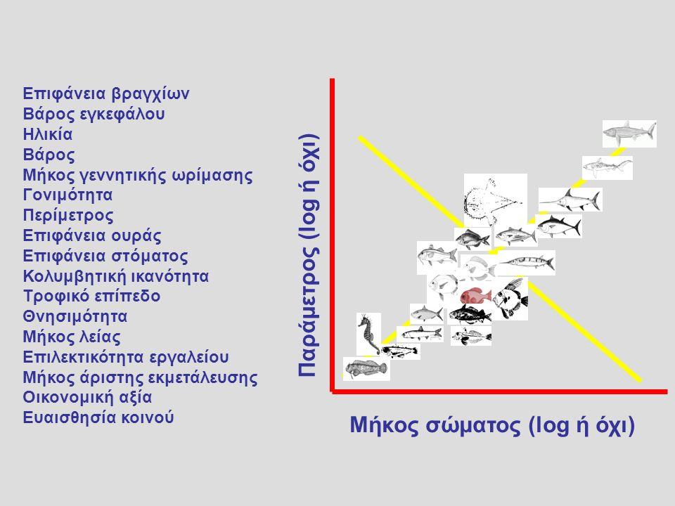 Μήκος σώματος (log ή όχι) Επιφάνεια βραγχίων Βάρος εγκεφάλου Ηλικία Βάρος Μήκος γεννητικής ωρίμασης Γονιμότητα Περίμετρος Επιφάνεια ουράς Επιφάνεια στόματος Κολυμβητική ικανότητα Τροφικό επίπεδο Θνησιμότητα Μήκος λείας Επιλεκτικότητα εργαλείου Μήκος άριστης εκμετάλευσης Οικονομική αξία Ευαισθησία κοινού Παράμετρος (log ή όχι)