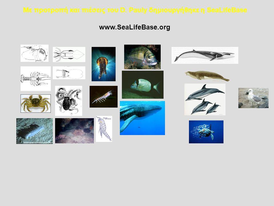Με προτροπή και πιέσεις του D. Pauly δημιουργήθηκε η SeaLifeBase www.SeaLifeBase.org