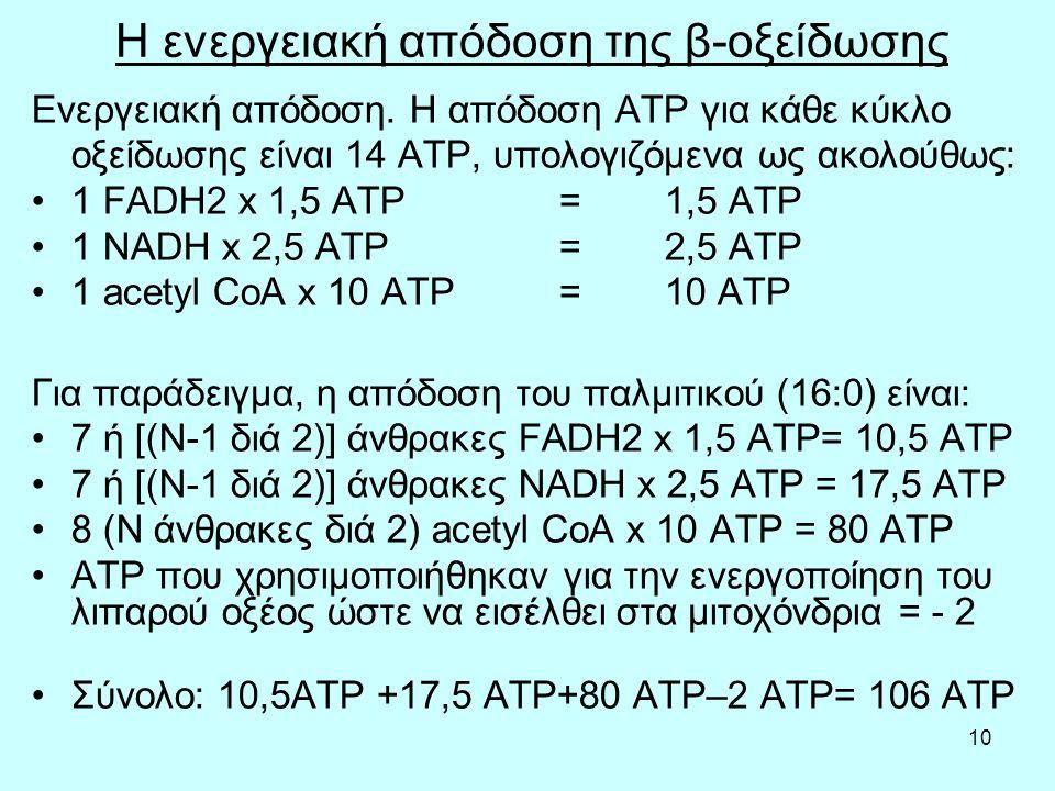10 Η ενεργειακή απόδοση της β-οξείδωσης Ενεργειακή απόδοση. Η απόδοση ATP για κάθε κύκλο οξείδωσης είναι 14 ATP, υπολογιζόμενα ως ακολούθως: 1 FADH2 x