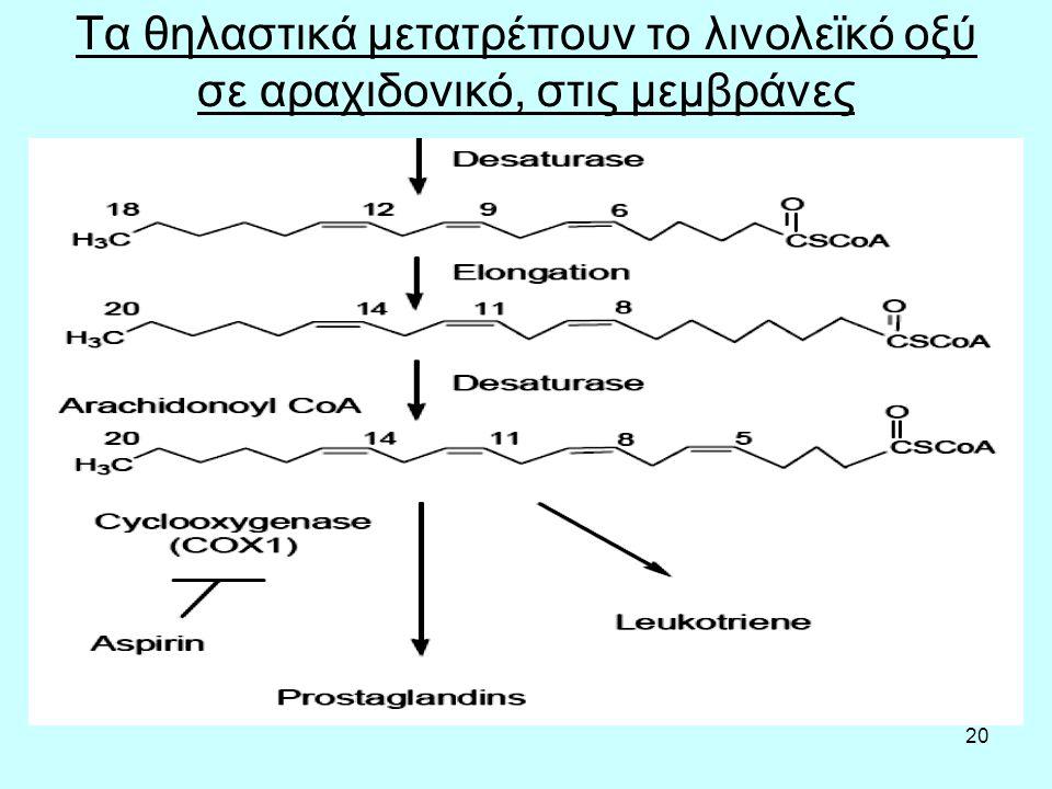 20 Τα θηλαστικά μετατρέπουν το λινολεϊκό οξύ σε αραχιδονικό, στις μεμβράνες