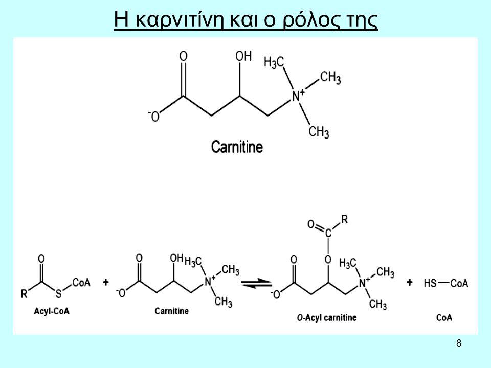 9 Η β-οξείδωση στα κορεσμένα FFA