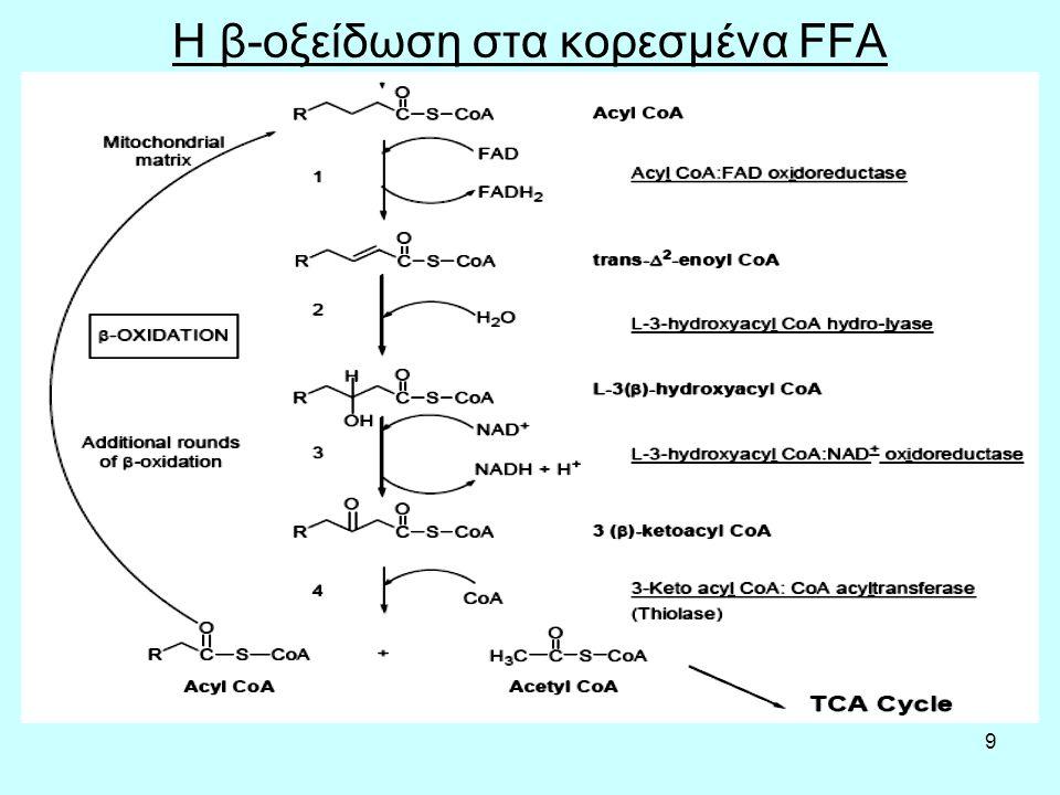 60 Υδροκορτιζόνη και κορτιζόλη Η κορτιζόλη είναι ορμόνη, το κύριο φυσικό γλυκοκορτικοειδές που συντίθεται από τον φλοιό των επινεφριδίων.