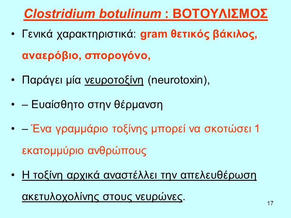 17 Clostridium botulinum : ΒΟΤΟΥΛΙΣΜΟΣ Γενικά χαρακτηριστικά: gram θετικός βάκιλος, αναερόβιο, σπορογόνο, Παράγει μία νευροτοξίνη (neurotoxin), – Ευαί