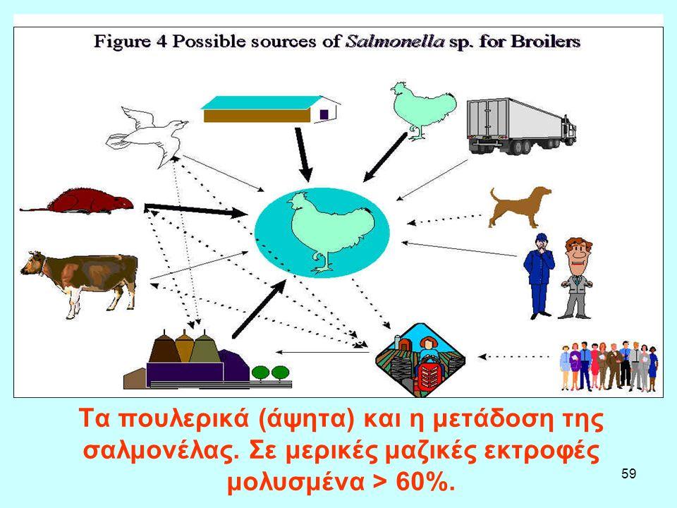 59 Τα πουλερικά (άψητα) και η μετάδοση της σαλμονέλας. Σε μερικές μαζικές εκτροφές μολυσμένα > 60%.