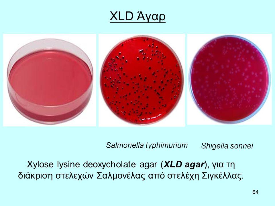 64 XLD Άγαρ Salmonella typhimurium Shigella sonnei Xylose lysine deoxycholate agar (XLD agar), για τη διάκριση στελεχών Σαλμονέλας από στελέχη Σιγκέλλ