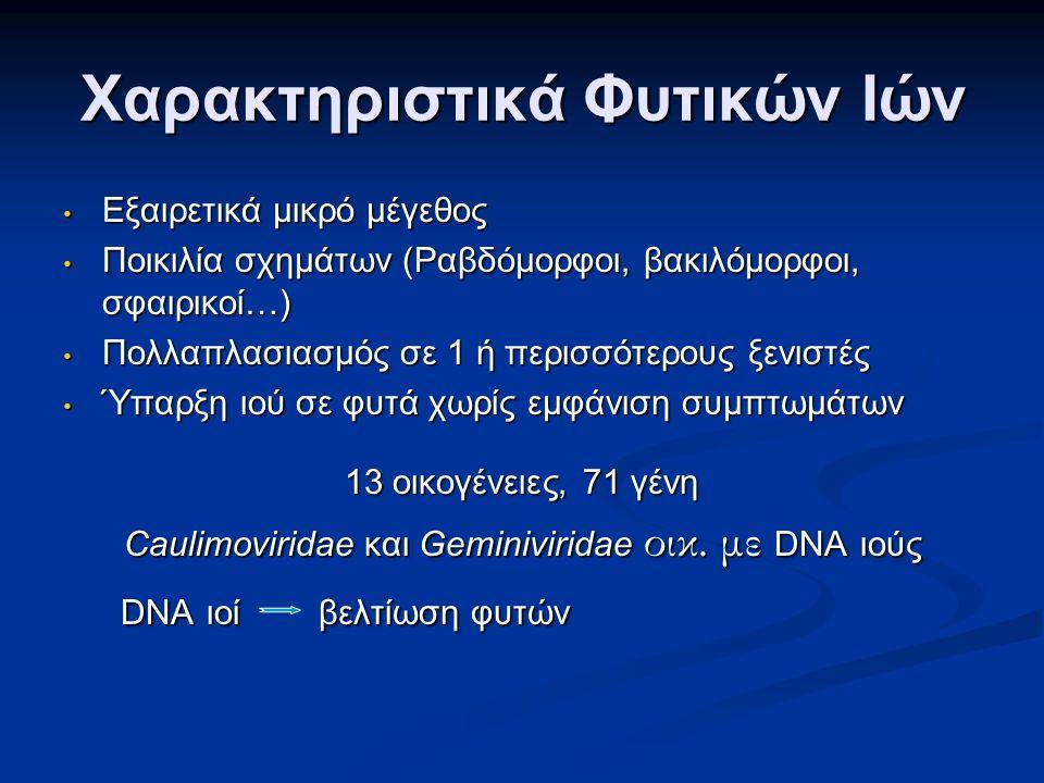 Χαρακτηριστικά Φυτικών Ιών Εξαιρετικά μικρό μέγεθος Εξαιρετικά μικρό μέγεθος Ποικιλία σχημάτων (Ραβδόμορφοι, βακιλόμορφοι, σφαιρικοί…) Ποικιλία σχημάτων (Ραβδόμορφοι, βακιλόμορφοι, σφαιρικοί…) Πολλαπλασιασμός σε 1 ή περισσότερους ξενιστές Πολλαπλασιασμός σε 1 ή περισσότερους ξενιστές Ύπαρξη ιού σε φυτά χωρίς εμφάνιση συμπτωμάτων Ύπαρξη ιού σε φυτά χωρίς εμφάνιση συμπτωμάτων 13 οικογένειες, 71 γένη Caulimoviridae και Geminiviridae οικ.