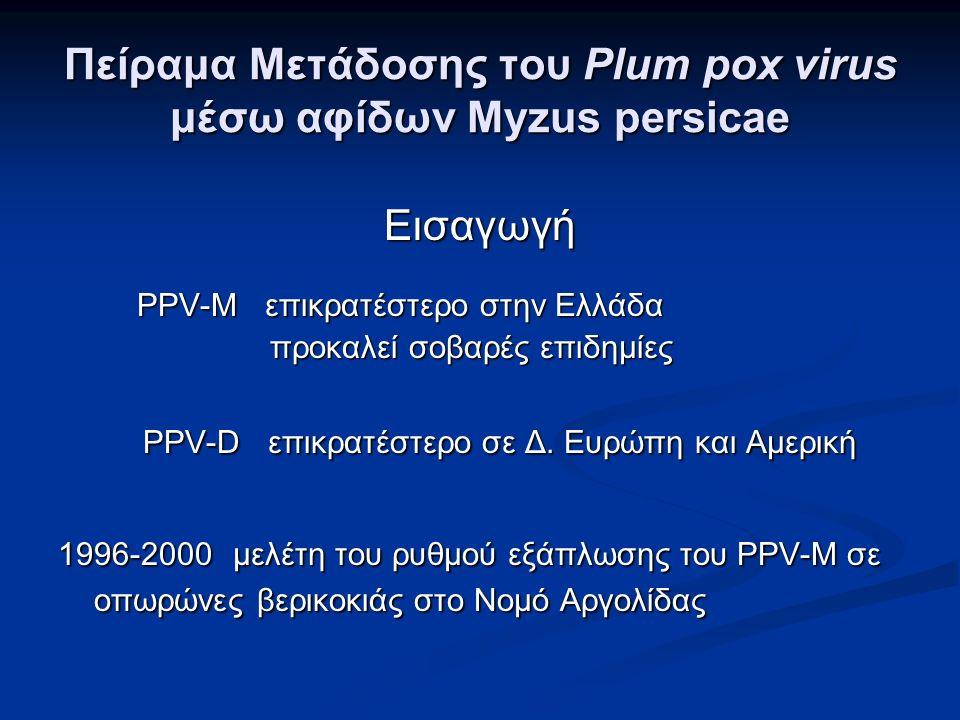 Πείραμα Μετάδοσης του Plum pox virus μέσω αφίδων Myzus persicae Εισαγωγή ΡΡV-Μ επικρατέστερο στην Ελλάδα ΡΡV-Μ επικρατέστερο στην Ελλάδα προκαλεί σοβαρές επιδημίες προκαλεί σοβαρές επιδημίες PPV-D επικρατέστερο σε Δ.