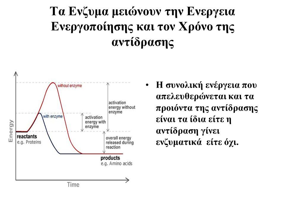 Tα Ενζυμα μειώνουν την Ενεργεια Ενεργοποίησης και τον Χρόνο της αντίδρασης Η συνολική ενέργεια που απελευθερώνεται και τα προιόντα της αντίδρασης είναι τα ίδια είτε η αντίδραση γίνει ενζυματικά είτε όχι.