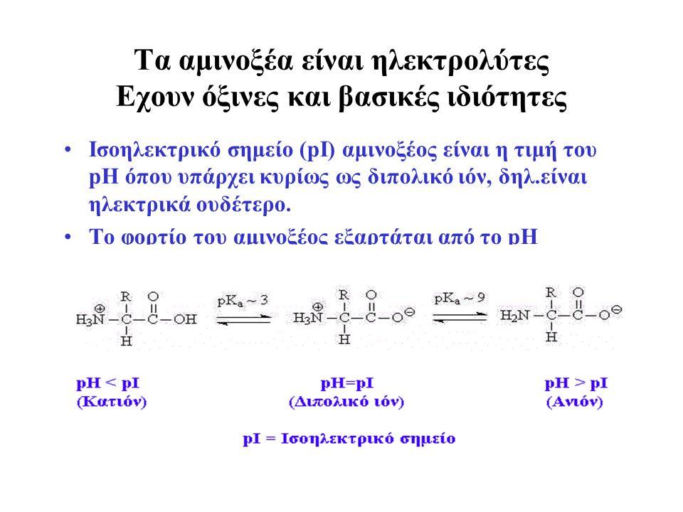 Τα αμινοξέα είναι ηλεκτρολύτες Εχουν όξινες και βασικές ιδιότητες Ισοηλεκτρικό σημείο (pI) αμινοξέος είναι η τιμή του pH όπου υπάρχει κυρίως ως διπολικό ιόν, δηλ.είναι ηλεκτρικά ουδέτερο.