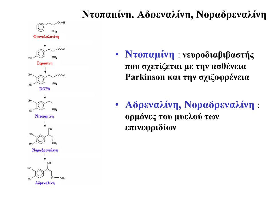 Nτοπαμίνη, Αδρεναλίνη, Νοραδρεναλίνη Ντοπαμίνη : νευροδιαβιβαστής που σχετίζεται με την ασθένεια Parkinson και την σχιζοφρένεια Αδρεναλίνη, Νοραδρεναλίνη : ορμόνες του μυελού των επινεφριδίων