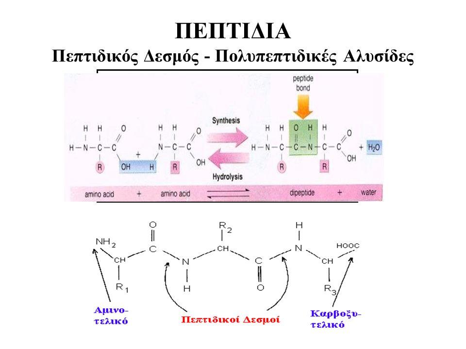 ΠΕΠΤΙΔΙΑ Πεπτιδικός Δεσμός - Πολυπεπτιδικές Αλυσίδες