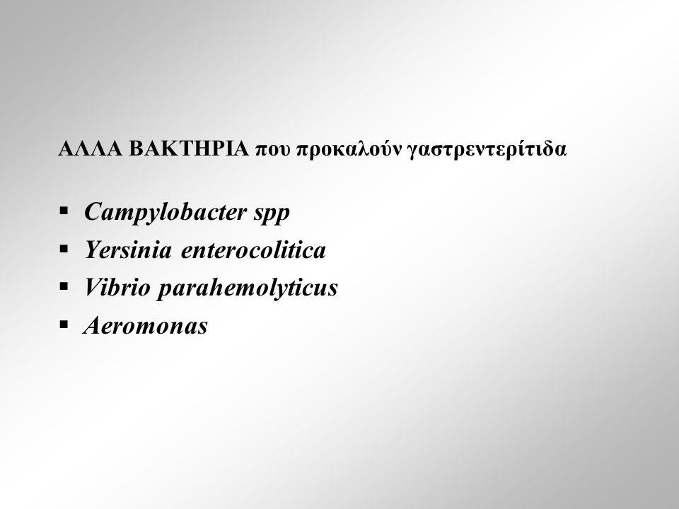 ΑΛΛΑ ΒΑΚΤΗΡΙΑ που προκαλούν γαστρεντερίτιδα  Campylobacter spp  Yersinia enterocolitica  Vibrio parahemolyticus  Aeromonas