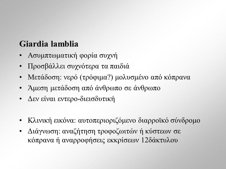 Giardia lamblia Ασυμπτωματική φορία συχνή Προσβάλλει συχνότερα τα παιδιά Μετάδοση: νερό (τρόφιμα ) μολυσμένο από κόπρανα Άμεση μετάδοση από άνθρωπο σε άνθρωπο Δεν είναι εντερο-διεισδυτική Κλινική εικόνα: αυτοπεριοριζόμενο διαρροϊκό σύνδρομο Διάγνωση: αναζήτηση τροφοζωιτών ή κύστεων σε κόπρανα ή αναρροφήσεις εκκρίσεων 12δάκτυλου