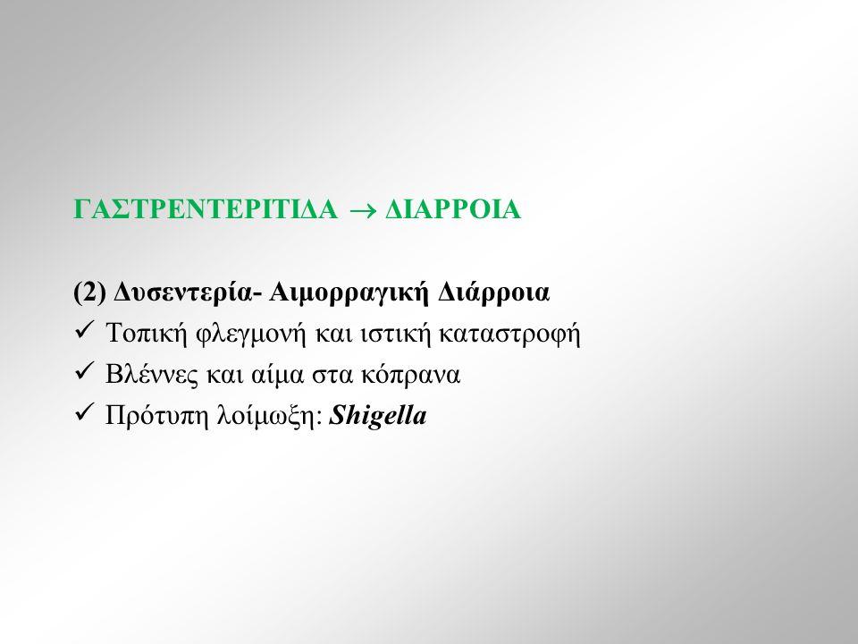 ΓΑΣΤΡΕΝΤΕΡΙΤΙΔΑ  ΔΙΑΡΡΟΙΑ (2) Δυσεντερία- Αιμορραγική Διάρροια Τοπική φλεγμονή και ιστική καταστροφή Βλέννες και αίμα στα κόπρανα Πρότυπη λοίμωξη: Shigella