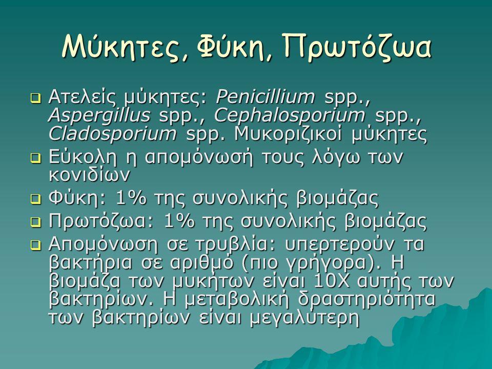 Μύκητες, Φύκη, Πρωτόζωα  Ατελείς μύκητες: Penicillium spp., Aspergillus spp., Cephalosporium spp., Cladosporium spp.