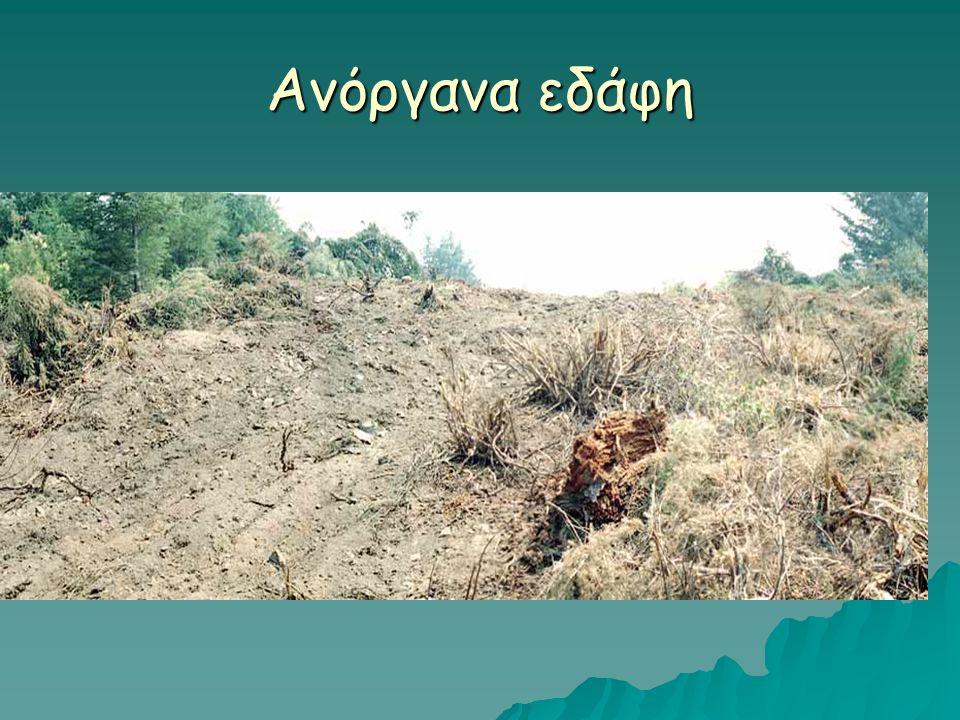 Φυσικο-χημικές συνθήκες Τα υποστρώματα των μο στο έδαφος Τα υποστρώματα των μο στο έδαφος o Προέρχονται από την πρωτογενή παραγωγή.