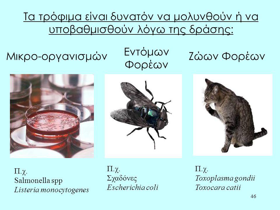 46 Τα τρόφιμα είναι δυνατόν να μολυνθούν ή να υποβαθμισθούν λόγω της δράσης: Μικρο-οργανισμών Εντόμων Φορέων Ζώων Φορέων Π.χ. Salmonella spp Listeria
