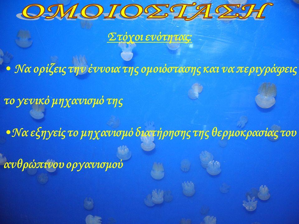 Κλωστρίδιο τετάνου