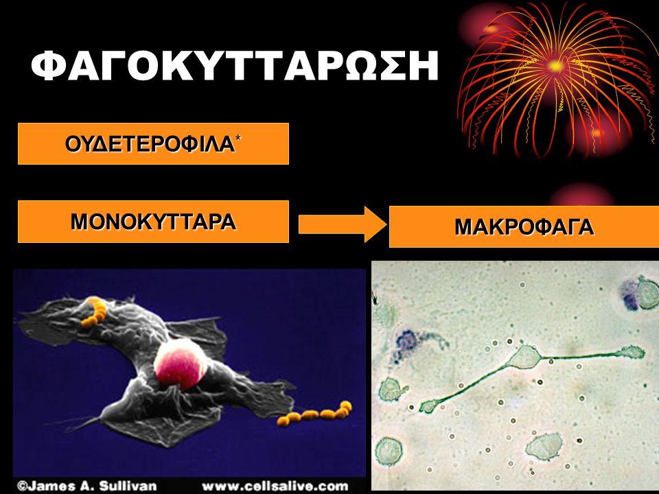 ΒΛΕΝΝΟΓΟΝΟΙ Βλεννογόνος αναπνευστικής οδού Βλεννογόνος του στομάχου Βλεννογόνος του επιπεφυκότα Βλεννογόνος στοματικής κοιλότητας Διαθέτει βλεφαριδοφόρο επιθήλιο Η κίνηση των βλεφαρίδων απομακρύνει τη βλέννα και τα παγιδευμένα σε αυτή μικρόβια Εκκρίνεται υδροχλωρικό οξύ Το όξινο περιβάλλον δρα ανασταλτικά στην ανάπτυξη μικροβίων.
