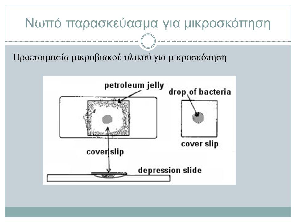 Νωπό παρασκεύασμα για μικροσκόπηση Προετοιμασία μικροβιακού υλικού για μικροσκόπηση